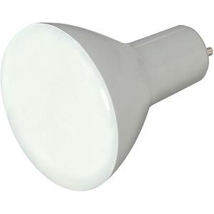 Screw Base LED Lamp